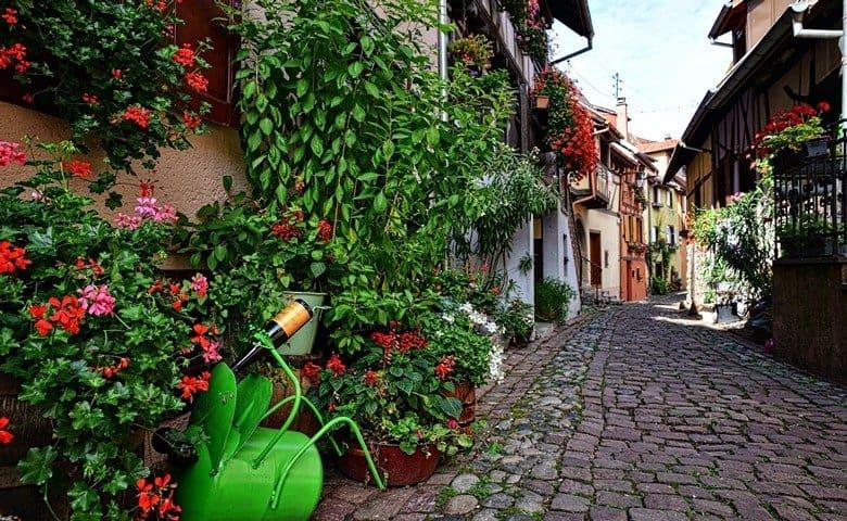 Colmar-Eguisheim-France Tour from Zurich copy3