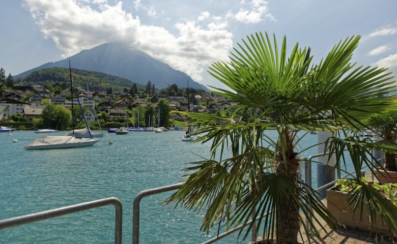 Interlaken Jungfrau Tour 009 copy